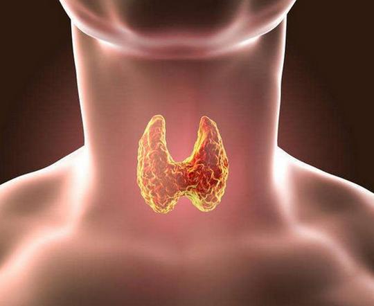促甲状腺素偏高原因,是甲功导致的吗,指数为10严重吗?