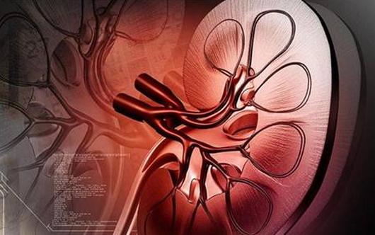 肾积水症状及表现,轻度的几天可自愈,应如何治疗?