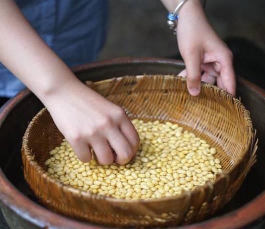 黄豆水的功效与作用,有哪些营养,它可以退烧是真的吗?