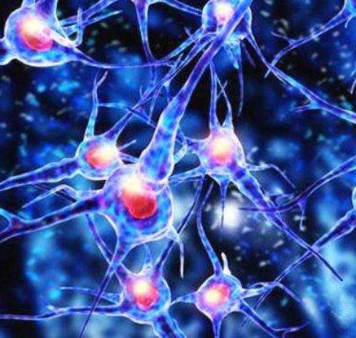 正中神经损伤可以修复吗,康复训练方法,如何治疗?