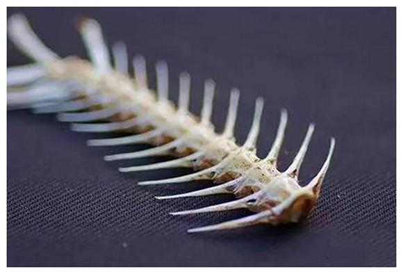 鱼刺卡在喉咙怎么办,如何自救,几天后自愈?