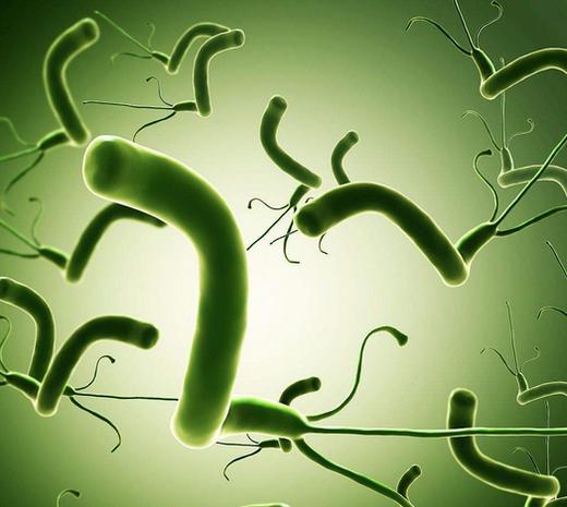 幽门螺杆菌检测标准,吹气多少钱,这种菌最怕什么食物?