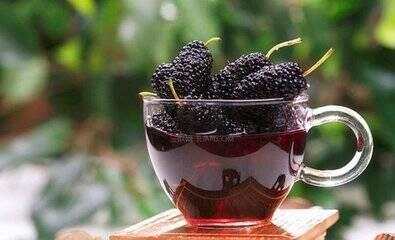 桑葚泡酒的功效与作用,品味别致的美食美酒!