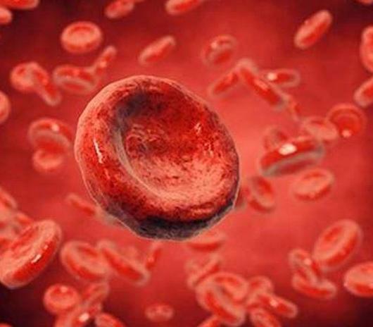 败血症能治好吗,初期症状和表现,多久会死?