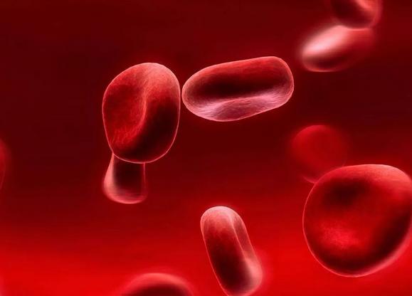 血红蛋白浓度低原因,成分分析,数值167正常吗?