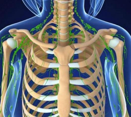 肋软骨炎为什么女性爱得?疼痛位置图和症状