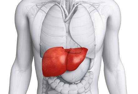 世界肝炎日由来 世界肝炎日 世界肝炎日历年主题