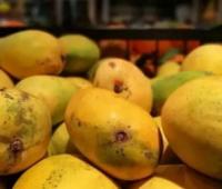 「健康」吃芒果为啥会过敏,这6类人别吃芒果