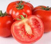 空腹吃西红柿好不好?晚上吃可以减肥吗?