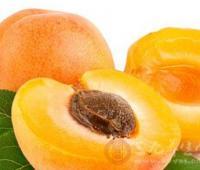 什么是杏子 杏子孕妇不能吃
