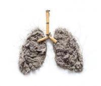 肺部疾病是哪些原因引起的,怎么治疗?