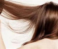 掉头发是缺什么?掉头发吃什么好?