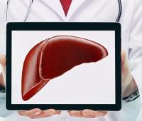脂肪肝如何治疗?能治疗好吗?