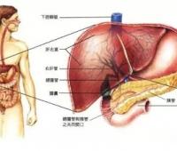 肝癌手术后饮食禁忌