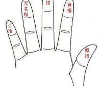 无名指是哪个手指?有什么美好的代表意义?