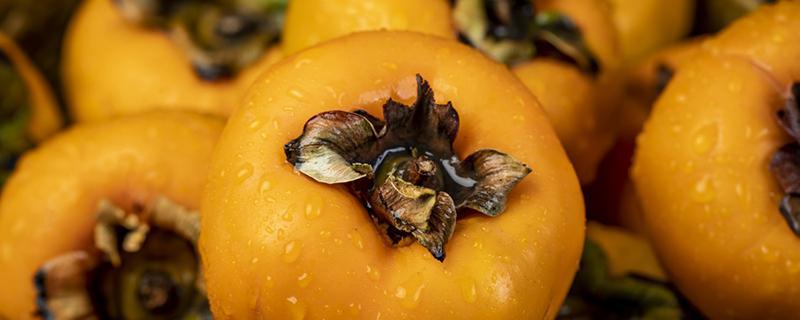 空腹吃柿子会得<a href=http://xuetangzaixian.com/s/danjieshi/ target=_blank class=infotextkey>胆结石</a>吗?为什么不能吃柿子