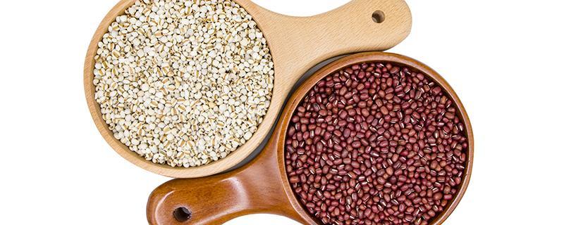 红豆薏仁水去湿的正确做法红豆薏仁的最佳饮用时间