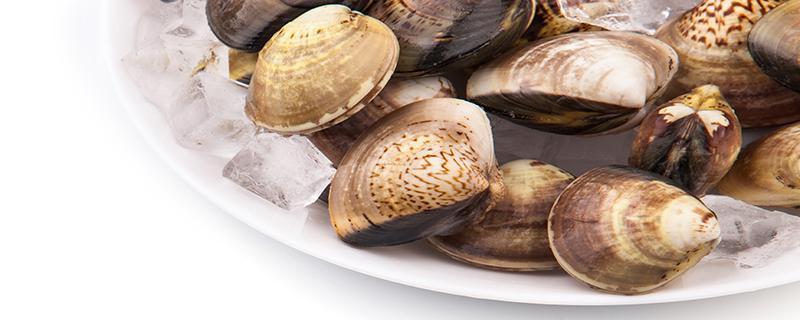 蛤蜊冷藏一夜后可以用冷水或热水食用吗