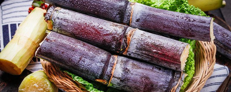 吃红色甘蔗会怎么样?吃红甘蔗一定中毒吗