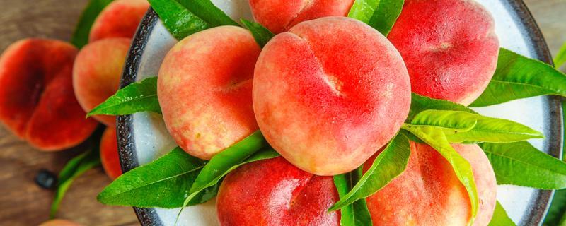为什么桃子放几天后会从里面腐烂?