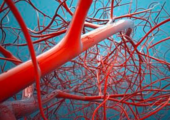 血管维护的方法有哪些